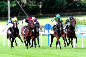 Landfall Horse Ken Condon