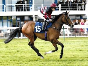 Newsletter horse Ken Condon