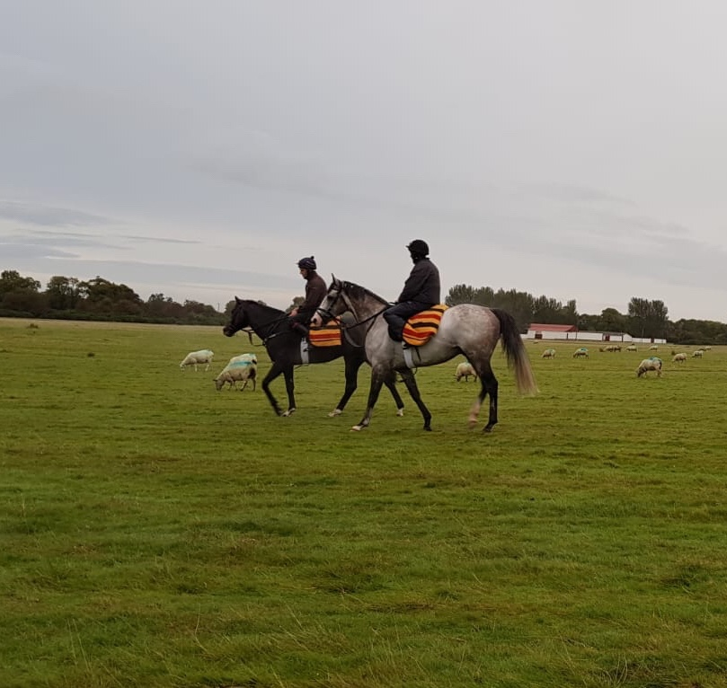 Romanised and Success Days to stay in training in2019