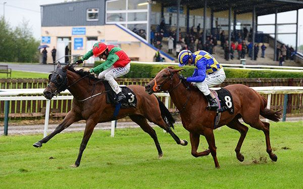 Mistress of Venice wins at Tipperary