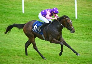 Celtic Beauty wins her maiden in Naas
