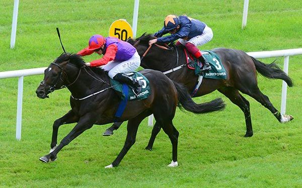 Romanised and Success Days both set to run in the Prix Jacques LeMarois