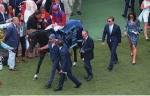 Romanised after the Gr.1 Prix Jacques Le Marois
