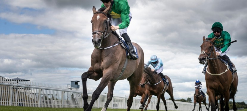 Ken Condon eyeing big-race riches with Romanised and classy crop ofjuveniles