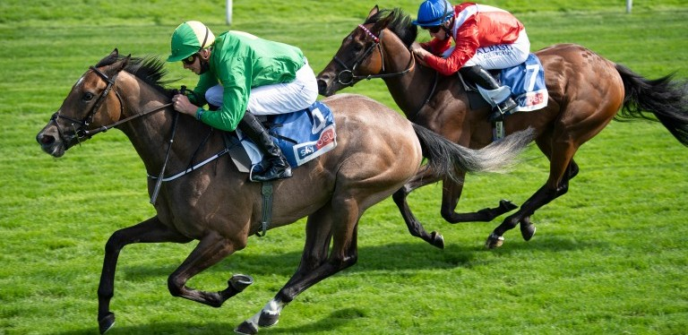 Condon lands Lowther as Miss Amulet denies Sacred in Knavesmireduel